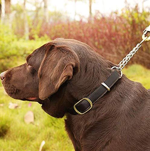 Beans Pet 犬 首輪 ハーフチョーク 本革 中型犬 大型犬 スタンダード 機能性 トレーニング 可愛い オシャレ 高品質 丈夫 10枚目のサムネイル