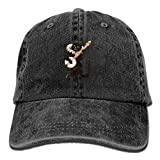 Unisex Vintage Cat Playing Banjo Personal Group Sports Cowboy Cap Peaked Baseball Cap