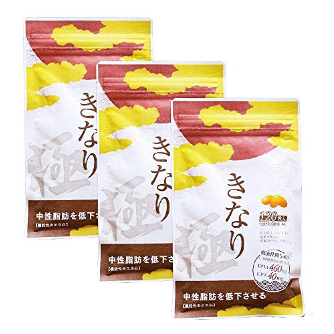 広大な誇りミニチュアさくらの森 きなり極 中性脂肪を低下させる 【機能性表示食品】 国産DHA?EPAサプリメント 3袋セット