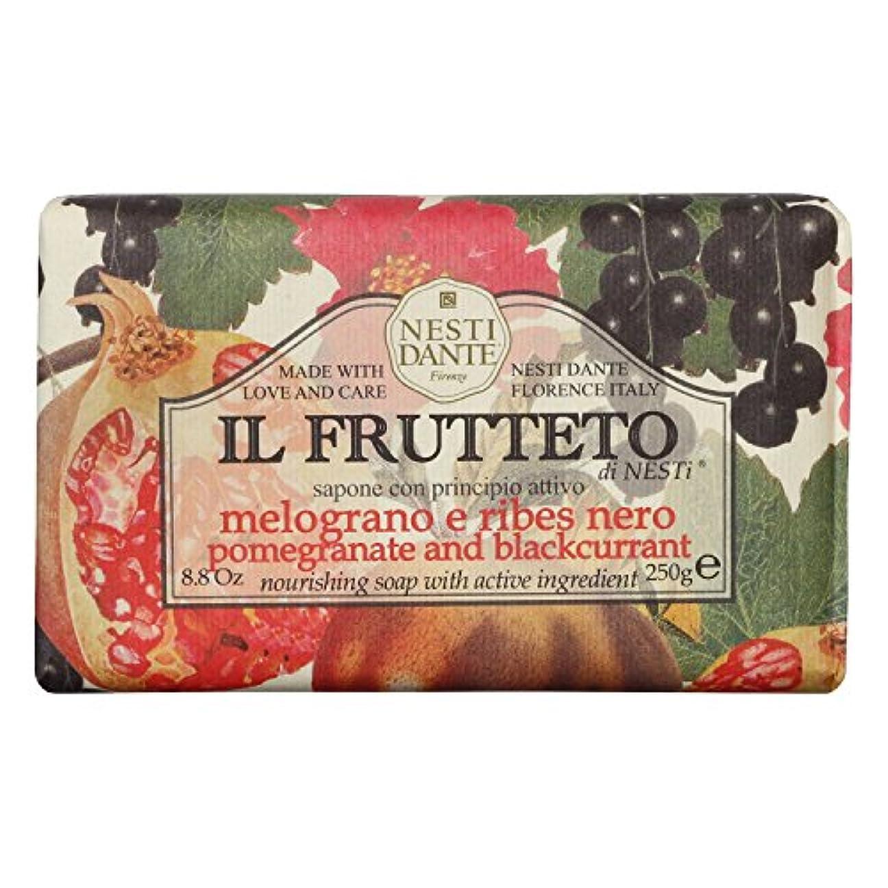 ピジン広告保存Nesti Dante ネスティダンテ フルッテートソープ ポメグラネート&ブラックカラント 250g