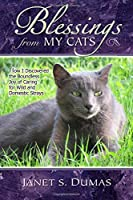 Blessings from My Cats: How I Discovered the Boundless Joy of Caring for Wild and Domestic Strays
