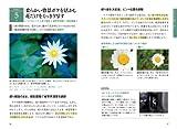 写真がもっと上手くなる デジタル一眼 撮影テクニック事典101 画像