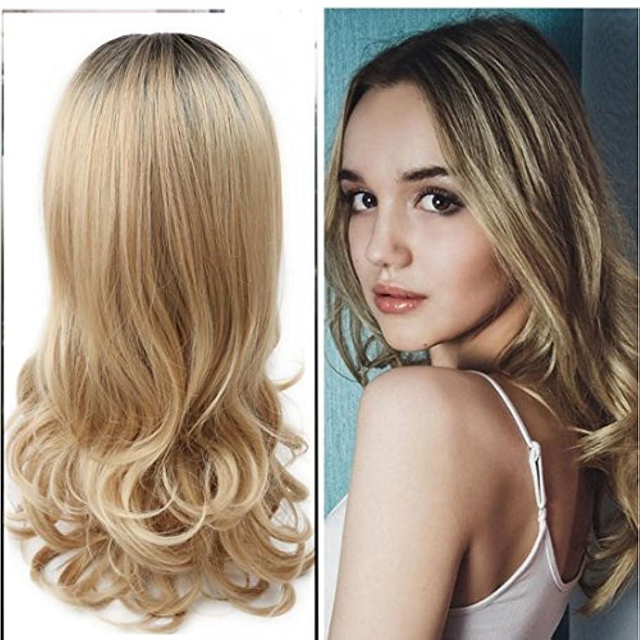 もちろん私恐れるJIANFU 女性 化学繊維 かつら 耐熱 自然な 巻き髪 グラデーション かつら (Color : Black brown gradient)