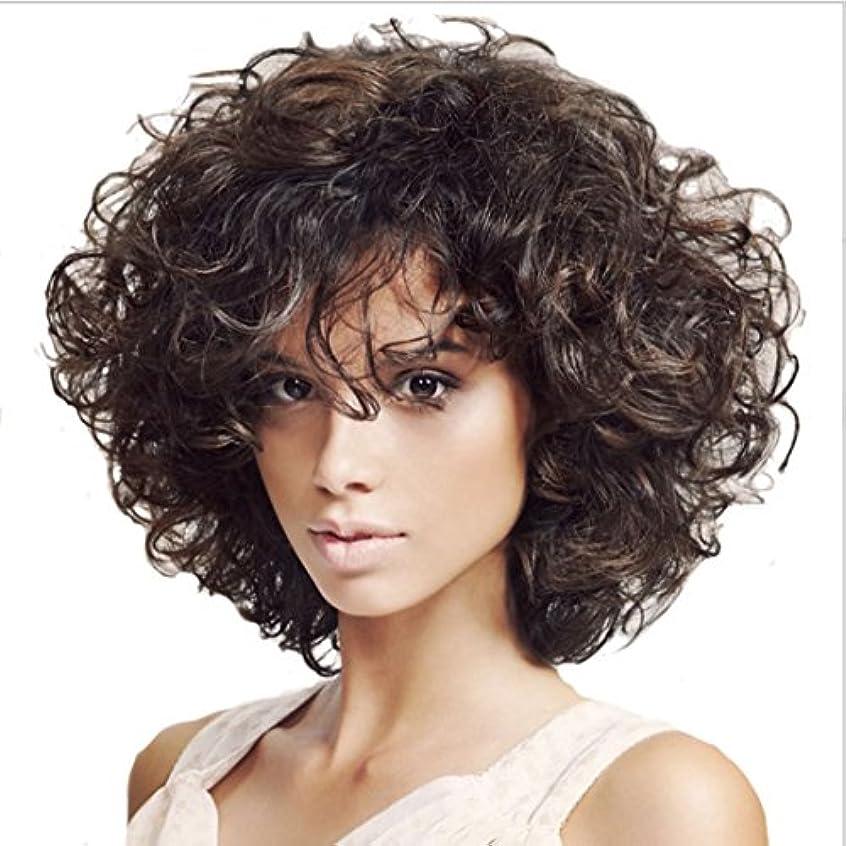 パトロール混雑スリップJIANFU 女性のための13inch高温のかつら部分的なバグのウィッグの短い縮毛髪耐熱性のためのふわふわした小さいウィッグ(ダークブラウン) (Color : Dark brown)