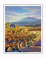 ジンファンデル・ヴィンヤードと山の風景 - ワインカントリーアート によって作成された カーン・エリクソン - アートポスター - 41cm x 51cm