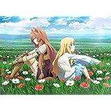 【Amazon.co.jp限定】盾の勇者の成り上がり Blu-ray BOX 2巻
