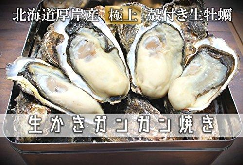 【北海道厚岸産 殻付き生牡蠣ガンガン蒸し焼きM・L・LL・3L各種サイズ 軍手・カキナイフ付】 満天☆青空レストランでご紹介された厚岸の極上牡蠣!お手軽にできるガンガン焼きセットを創業70年を誇る厚岸の牡蠣漁師より直送します。時にはギフトに、時には自分への