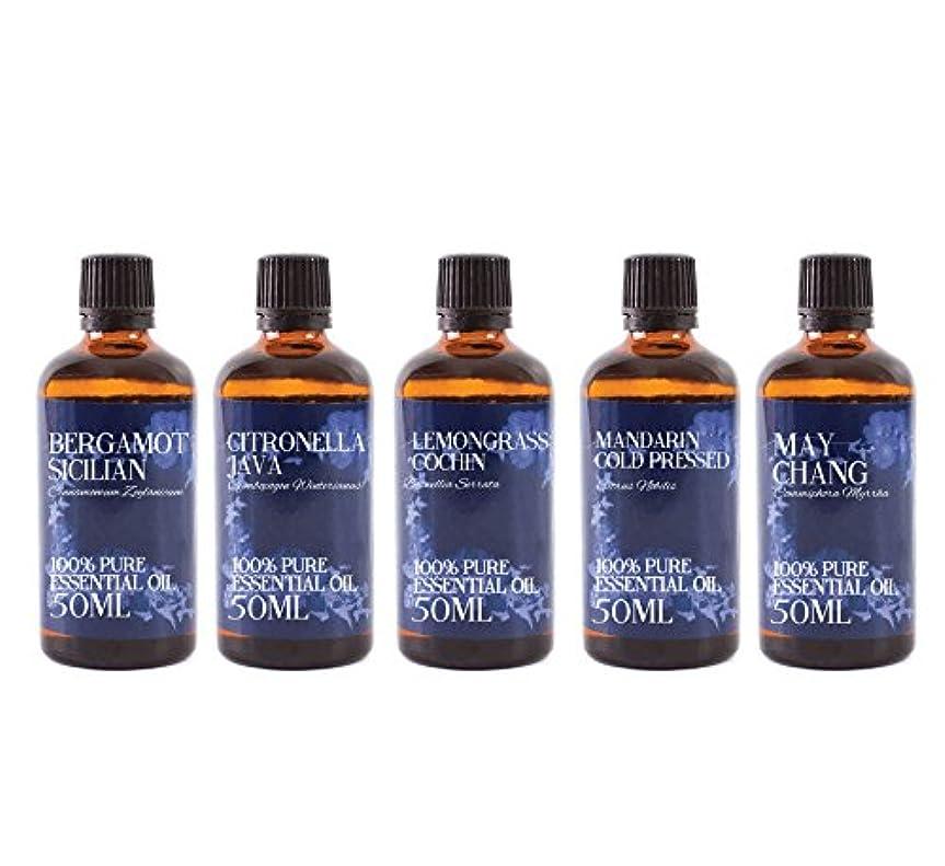 二次植物学者例外Mystic Moments   Gift Starter Pack of 5 x 50ml Citrus (Pack 2) Essential Oils