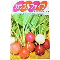 廿日大根 種 カラフルファイブ 小袋(約7ml)