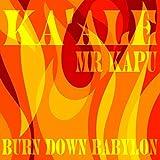 Burn Down Babylon (Sovereign Version) [feat. Mr Kapu] [Explicit]