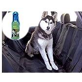 ペット用 大判 ドライブ シート 黒 150cm × 145cm 携帯 水のみ 水筒 セット 犬 用 自動車 車 車載 レジャー 行楽 旅行 (ブラック)