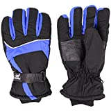 HIROMARUjp 防水 防風 グローブ 手袋 スノーボード スキー バイク 男 女 兼用 青 ブルー