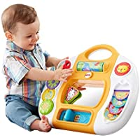 Fisher-Price Rainforest Friends Activity Panel [並行輸入品]