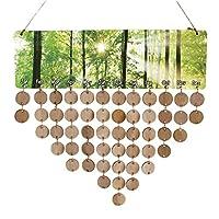 Prettyia 木製カレンダーボード 50枚のディスク 50個のアセンブリフック DIY 手作り 木製 記念日 飾り 5タイプ選べ - タイプ5