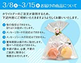 ホワイトデー お返し リボン付 マカロン 2個入 天使がくれたマカロン お菓子 プチギフト 個包装