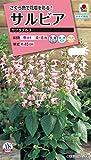 タキイ種苗 サルビア サクラプルコ