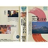 天に遊ぶわれ~梅原龍三郎~ [VHS]