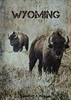 """WYOMING: Bison Journal: Stunning picture of a Bison on a Diary (in dots) to write in, draw in or doodle in, collection """"extinct animals"""". Will make a nice gift for farmers, animal lovers and kids, mixed art, photography, endangered species"""