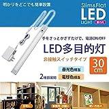 ELPA LED多目的ライト ALT-1030IR(D) 昼光色 30×8×300mm