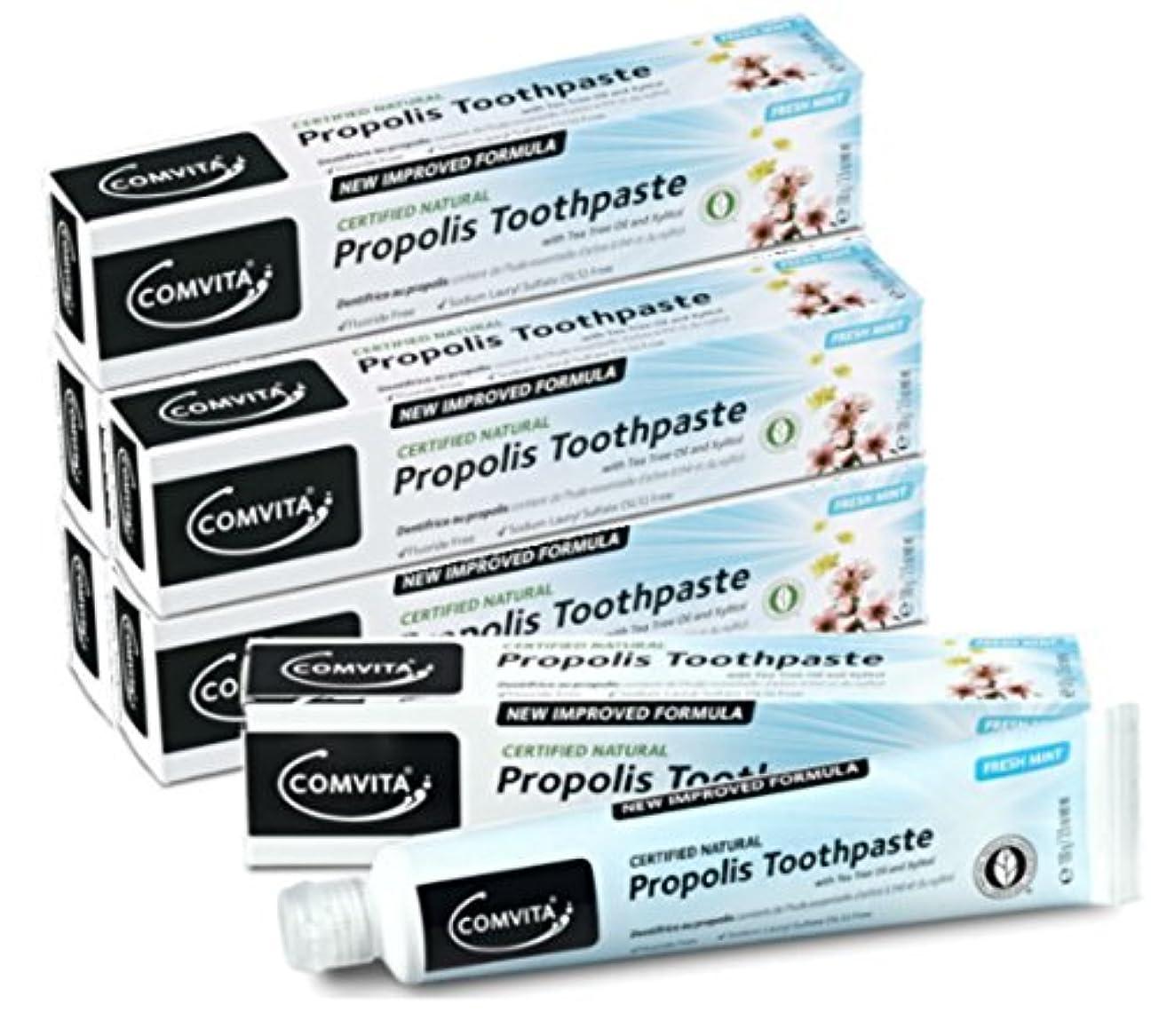 トラフミリメーター寛大さプロポリス歯磨き コンビタ アピセラ歯磨き (100g) お得な6本セット ティーツリーオイル配合