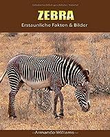 Zebra: Erstaunliche Fakten & Bilder