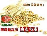ご飯が美味しくなるモッチリ食感 古賀農園 (佐賀県)国産無農薬白もち麦(玄麦)3kg(1kgx3)