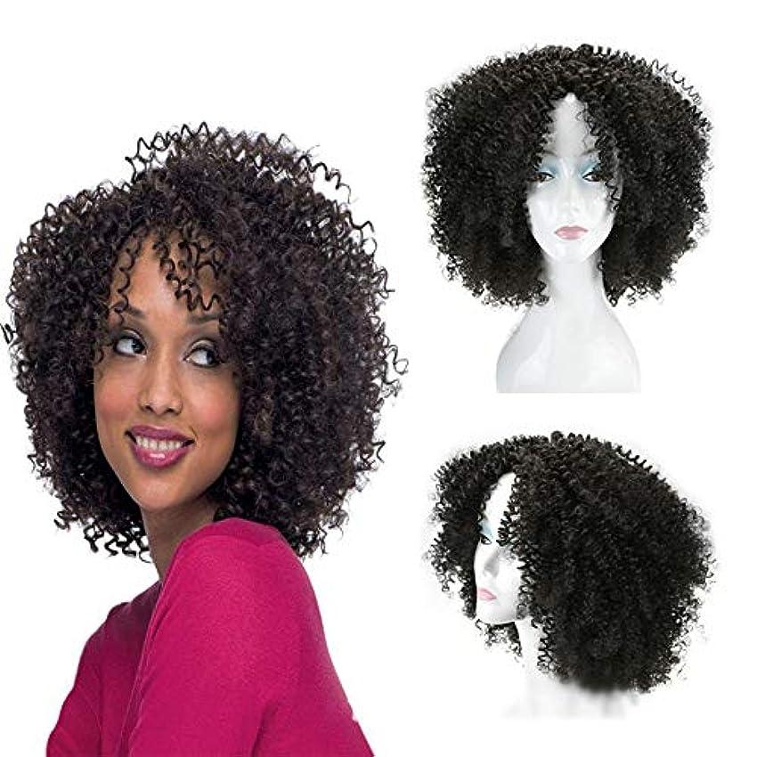 リゾートブラウス私YOUQIU 16インチ変態カーリー黒爆発デイリーコスプレパーティードレスウィッグ用のヘッドの女性のアフリカの小カーリーヘア (色 : 黒)