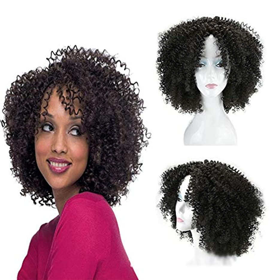 オープナー贅沢帆YOUQIU 16インチ変態カーリー黒爆発デイリーコスプレパーティードレスウィッグ用のヘッドの女性のアフリカの小カーリーヘア (色 : 黒)