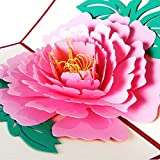 BEESCLOVER 3D Pop Up Greeting Cards Birthday Valentine Mother's Day Thanks Postcard Gift New Drop Ship Pink One Size