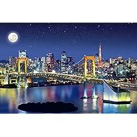 1000ピース 光るジグソーパズル めざせ! パズルの達人 輝くお台場 ベイエリア-東京 (50x75cm)