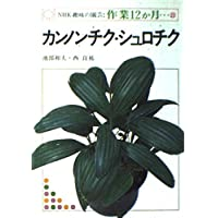 NHK趣味の園芸・作業12か月 22 カンノンチク・シュロチク
