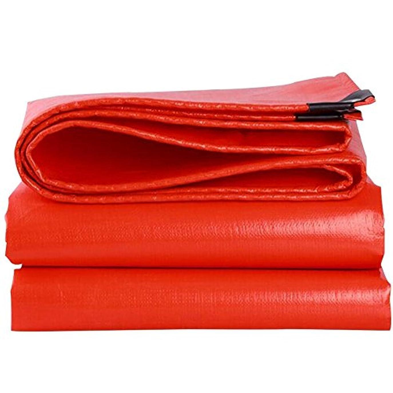 石の階層腐ったQL 厚手のカラーストリップ、防雨布、サンターポリン、超軽量グッズ、車のオーニング、プラスチックキャンバスターポリン で利用可能 tarp (Size : 3X5m)