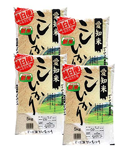 愛知県産 白米 コシヒカリ 20kg(5kg×4)令和1年産 こしひかり 白米 お米