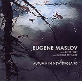 Autumn in New England 画像