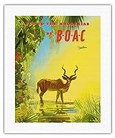 ローデシアに飛びます - BOAC (英国海外航空株式会社) - ビンテージな航空会社のポスター によって作成された フランク・ウートン c.1951 - キャンバスアート - 41cm x 51cm キャンバスアート(ロール)