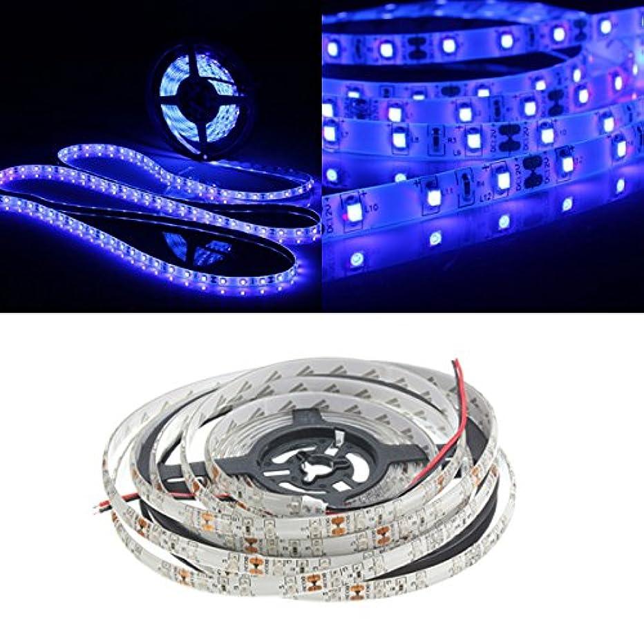 退院演劇リクルートクインウィンド 0.5/1/2/3/4/5m 3528 UV 紫外線パープル防水ストリップランプブラックライト12v - 0.5M