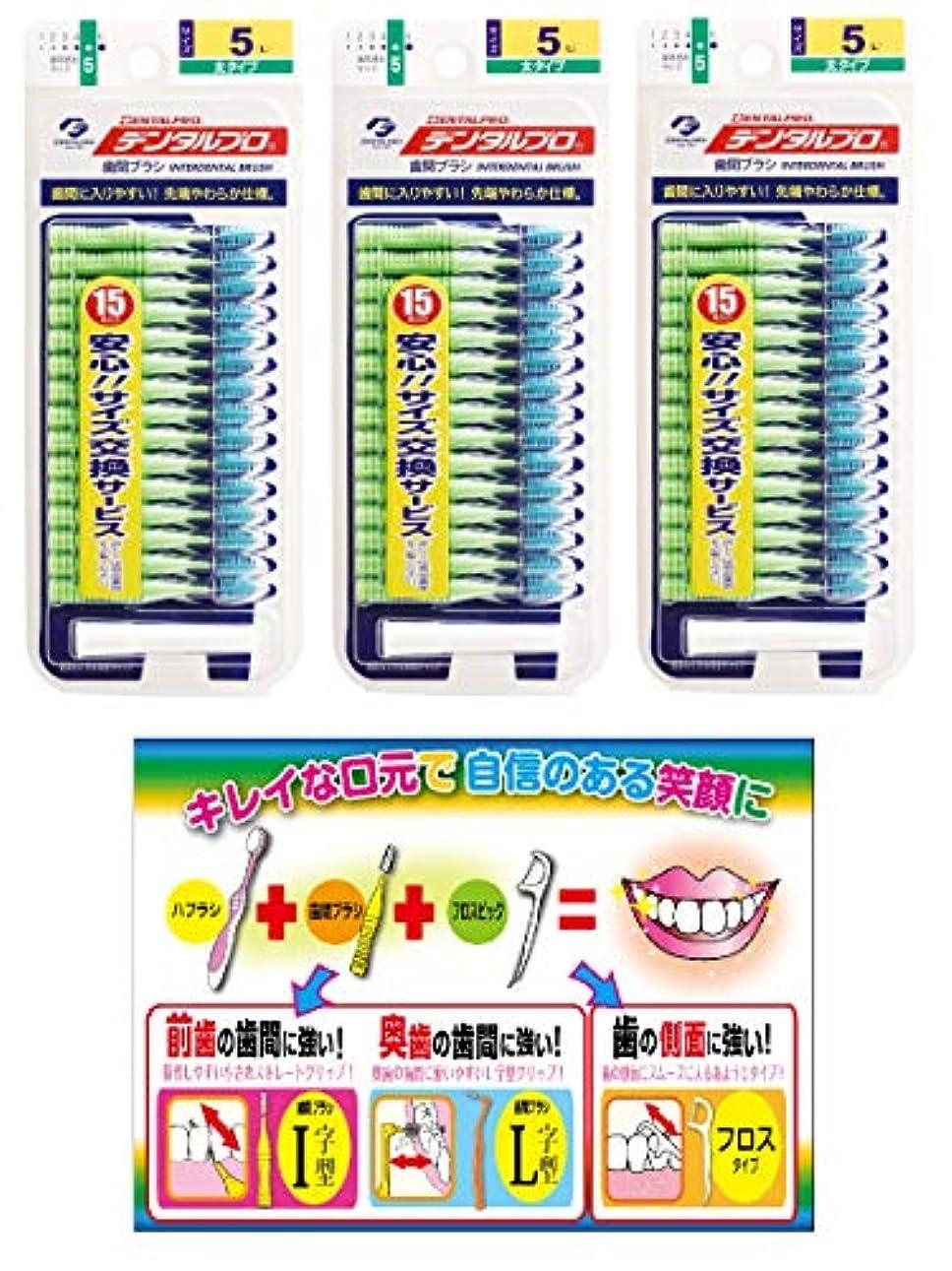 【Amazon.co.jp限定】DP歯間ブラシ15P サイズ5 3P+リーフレット