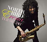 NORTH BIRD 画像