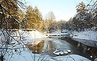冬の自然の木々の雪 キャンバスの 写真 ポスター 印刷 旅行 風景 景色 (60cmx40cm)