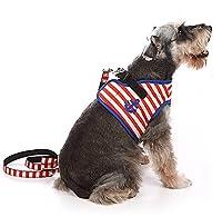 Doogy Sunshine 小型犬 ハーネス 犬用 リード セッ 縞模様の 可愛い 猫用 ハーネス ペット 犬の服 散歩 犬用 胴輪 通気性 調節可能 安全 ペット用品 レッド S