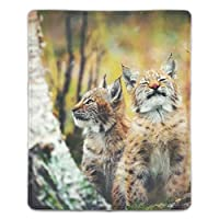 マウスパッド 滑り止め 天然ゴム 長方形 タイガーネコ野生動物哺乳類自然