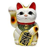 常滑焼 8403 梅月5号白小判付招猫(右手) 梅月H16㎝