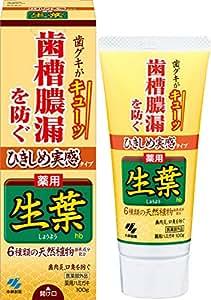 ひきしめ生葉(しょうよう) 歯槽膿漏を防ぐ 薬用ハミガキ ハーブミント味 100g (リーフレット付き)