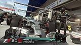 「F1 2015」の関連画像