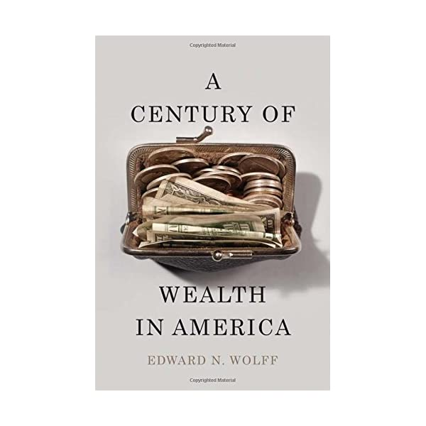 A Century of Wealth in A...の商品画像