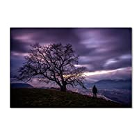 "Trademark Fine Art The Tree of Love Grenoble Artwork by Mathieu Rivrin 22"" x 32"" RV0014-C2232GG"