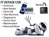 IT Computer Repair - System Restore, Antivirus, Malware Removal, Data Recovery, Password Reset, Drivers Update, Bootable Boot USB Flash Thumb Drive 2017 Release [並行輸入品]