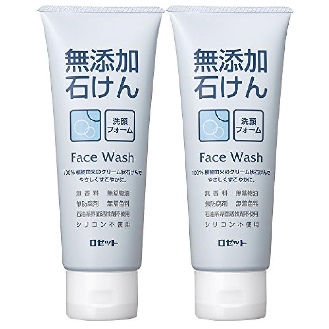 水を飲む企業コンパイルロゼット 無添加石けん 洗顔フォーム 140g×2個パック AZ