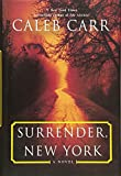 Surrender, New York: A Novel 画像