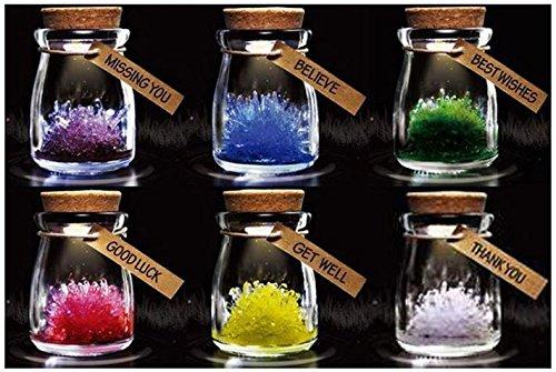 [ Alnair (アルナイル)] 結晶 1日で育つ 水晶 育成キット クリスタル 自由 研究 6色セット 12星座 (6色セット)